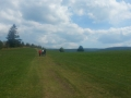 Panorama : Le sentier de crête.