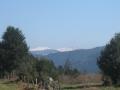 Panorama sur les sommets vosgiens enneigés